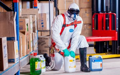 DDD / Control de Plagas
